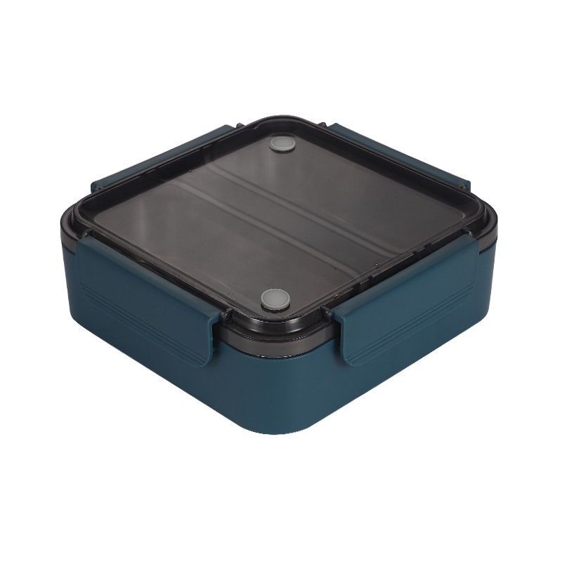 box tiffin, food container lid, Two boxes for lunch, Food Storage Container Boxes